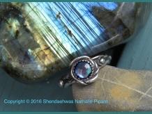Mermaid's abalone By Shendaehwas